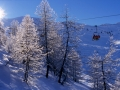 Pila-Winter2015-11