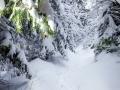 Valais-Winter2015-01