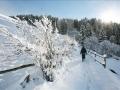 Alta_Valtellina-Winter2015-10